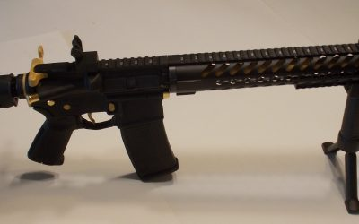 Custom Built AR 15  – Oregon