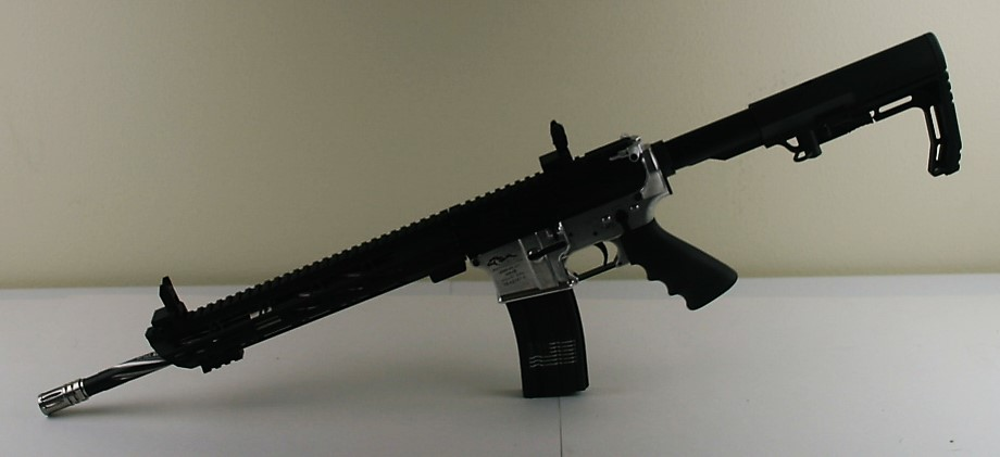 AR 15 custom build