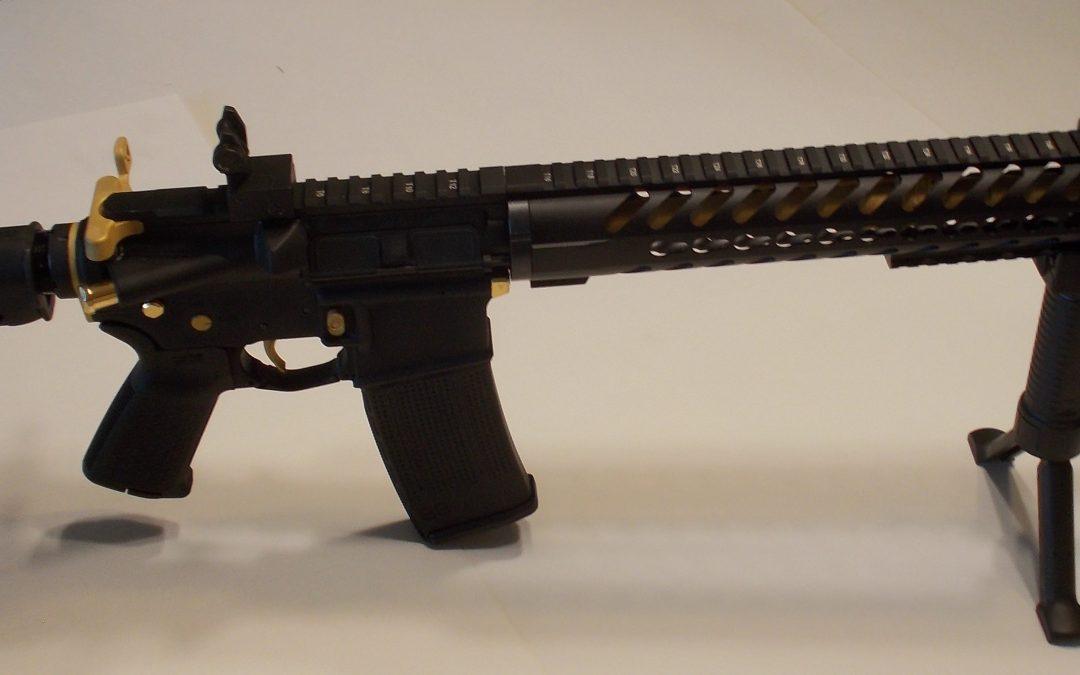 Custom Built AR 15  – Oregon